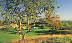 Phoenix golf packages